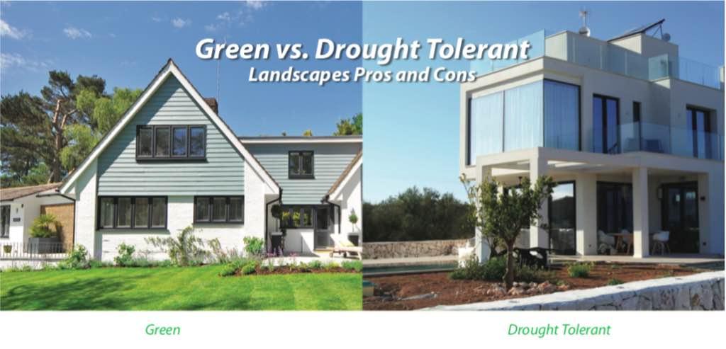 Green Lawns Vs Drought Tolerant