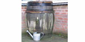 Rain Barrel Greywater