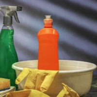 Which Detergent is Safe for DIY Greywater Systems